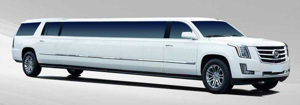 Limo and Party Bus Service Wine Tasting, Weddings, Clubbing, Proms (san jose north)